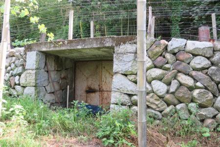 葡萄貯蔵庫