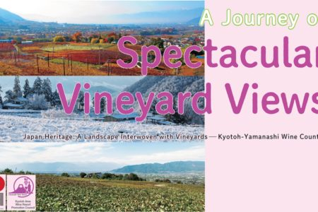 A Journey of Spectacular Vineyard Views【StoryBook】