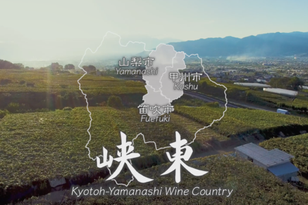 A Journey of Spectacular Vineyard Views【Movie】