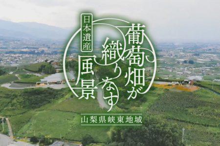 映像コンテンツ(春・夏)【完全版】