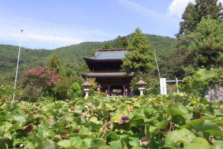 大善寺の夏(甲州市)